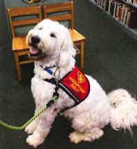 Woof! Sully the Therapy Dog is here at SRHS!