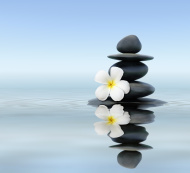 zen stones with flowers