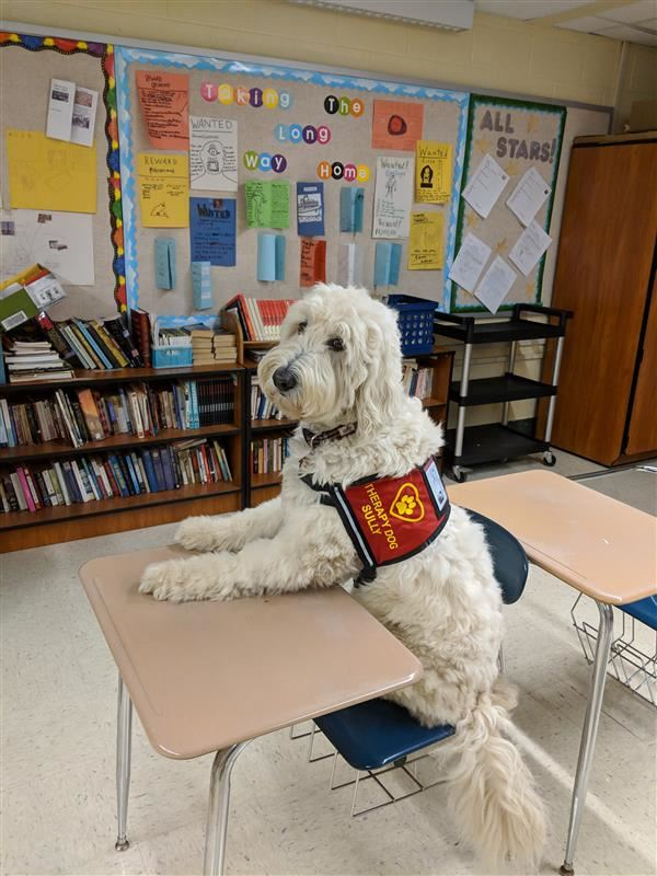 SRHS Gets a Therapy Dog